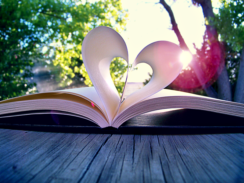 Can a Book Really Show You Where to Find Love and How to Find It